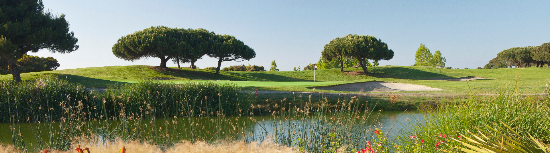 Shoreline Golf Links is located in Mountain View, CA